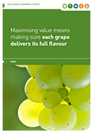 Growing Futures - Optimising vineyard yield