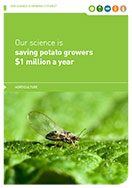 Growing Futures - The Tomato-Potato Psyllid