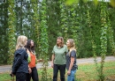 Giving Northland students a taste of horticulture