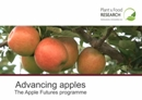 Apple Futures: Sustainability in New Zealand Apple